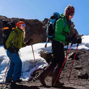 Vandring på hög höjd uppepå Kilimanjaro - Afrikas högsta berg