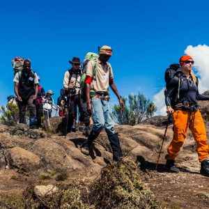 Vandring på Kilimanjaro