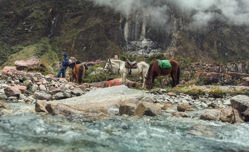 Hästar på Inkaleden