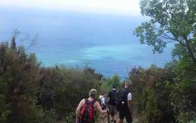 Vandrar ner mot kusten i Cinque Terre