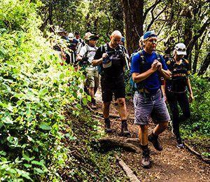 Vi vandrar genom fyra klimatzoner på vägen mot Kilimanjaro, bland annat tät och fuktig djungel