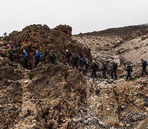 När vi ökar i höjdmeter mot Kilimanjaro blir miljön torrare