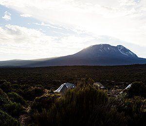 Majestätiska Kilimanjaro syns från tälten