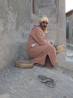 berber i marocko med en orm