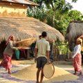 lokal kultur i Chitwan