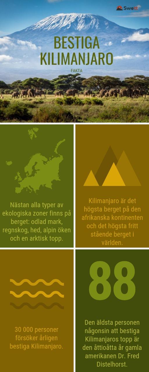 Fakta Bestiga Kilimanjaro
