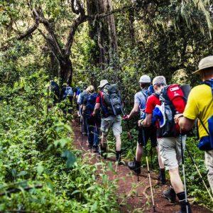 Rutter på Kilimanjaro | Swett